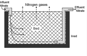 denitrification wall and bed